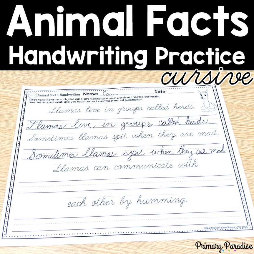 Animal Fact Handwriting Practice: Cursive -