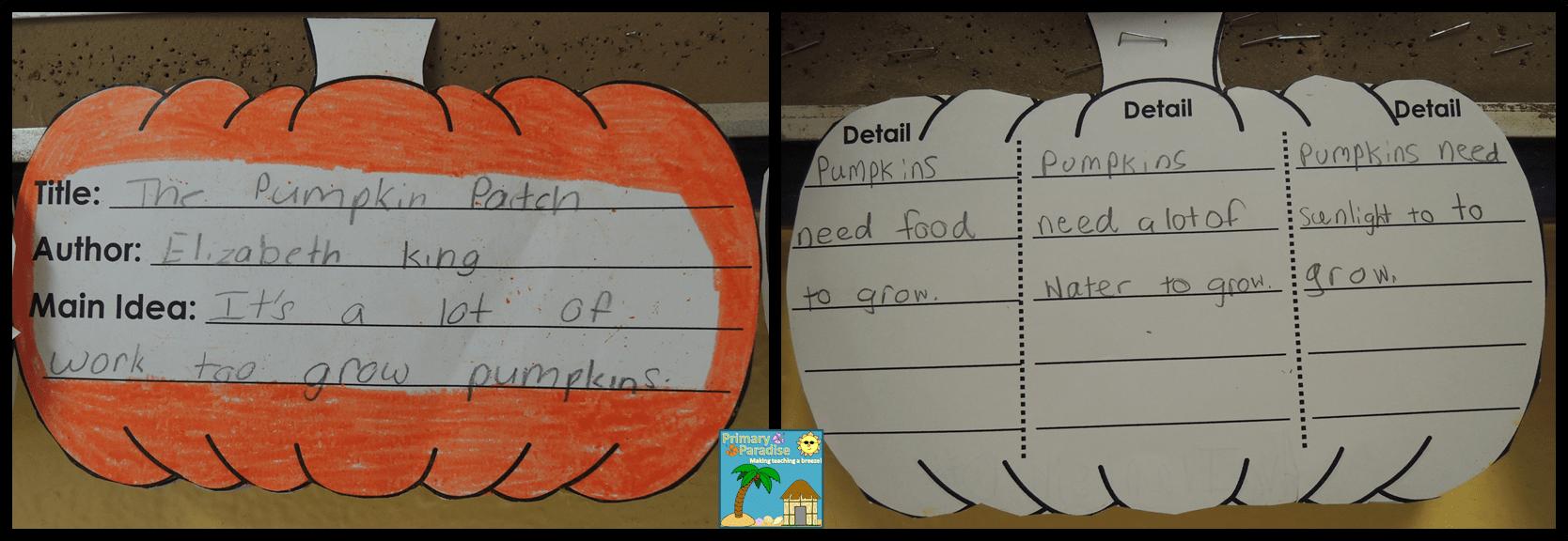 Pumpkin Main Idea Flipper