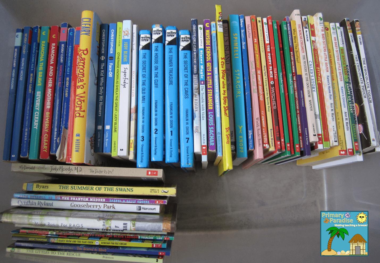 Yard Sale Books Organized